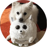 white dog with waggables plush